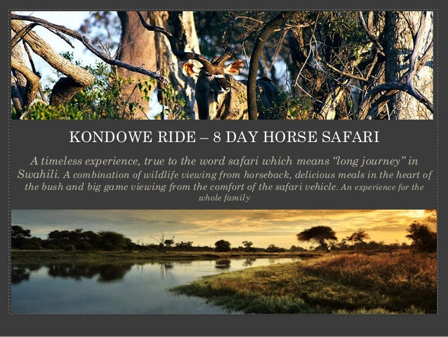 """KONDOWE RIDE – 8 DAY HORSE SAFARI A timeless experience, true to the word safari which means """"long journey"""" in Swahili. A ..."""