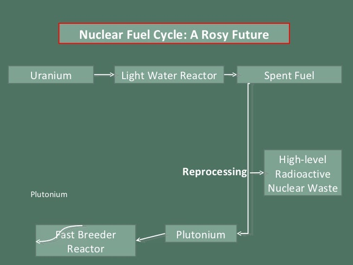 Light Water Reactor Spent Fuel High-level Radioactive Nuclear Waste Plutonium Fast Breeder Reactor Plutonium Reprocessing ...