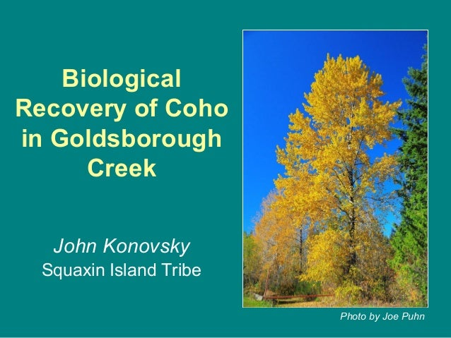 Biological Recovery of Coho in Goldsborough Creek John Konovsky Squaxin Island Tribe Photo by Joe Puhn