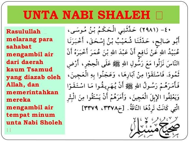 UNTA NABI SHALEH  Rasulullah  melarang para  sahabat  mengambil air  dari daerah  kaum Tsamud  yang diazab oleh  Allah, da...