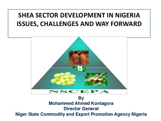 SHEA SECTOR DEVELOPMENT IN NIGERIAISSUES, CHALLENGES AND WAY FORWARD                           By               Mohammed A...