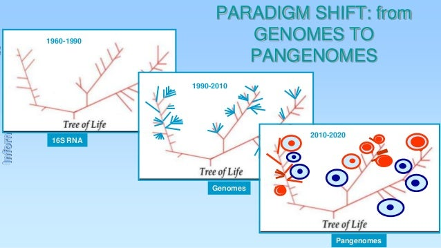 1960-1990  PARADIGM SHIFT: from GENOMES TO PANGENOMES  Information  1990-2010  2010-2020  16S RNA  Genomes  Pangenomes