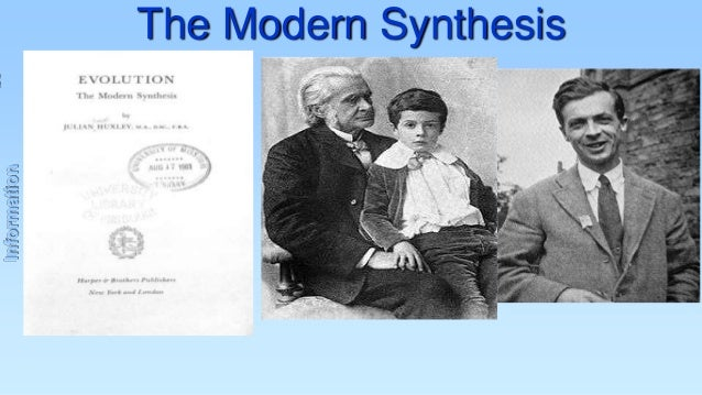 Information  The Modern Synthesis