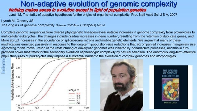 Non-adaptive evolution of genomic complexity  Nothing makes sense in evolution except in light of population genetics  Lyn...
