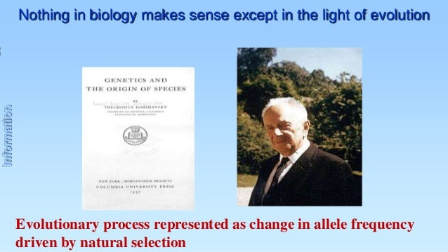 Information  Nothing in biology makes sense except in the light of evolution  Evolutionary process represented as change i...