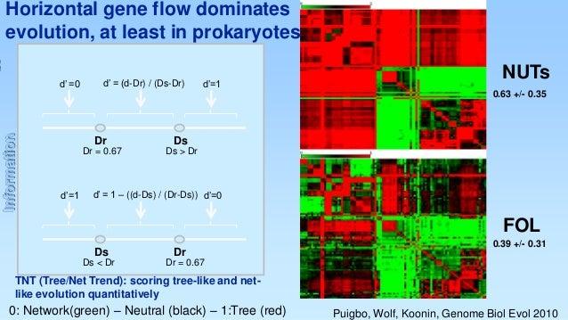 Horizontal gene flow dominates evolution, at least in prokaryotes d' =0  d' = (d-Dr) / (Ds-Dr)  d'=1  NUTs  Information  0...