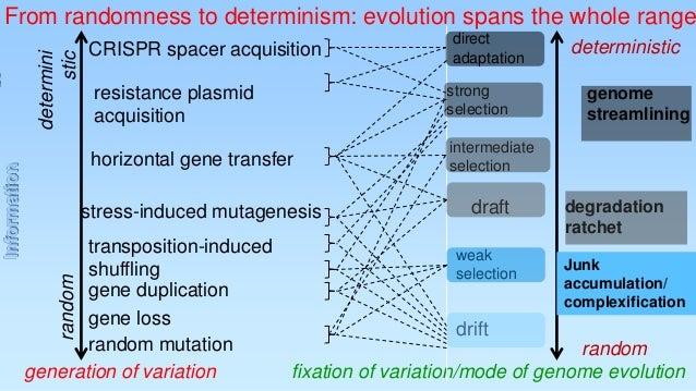 CRISPR spacer acquisition  direct adaptation  resistance plasmid acquisition  strong selection  horizontal gene transfer  ...