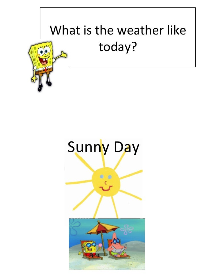 What is the weather like today? Sunny Day