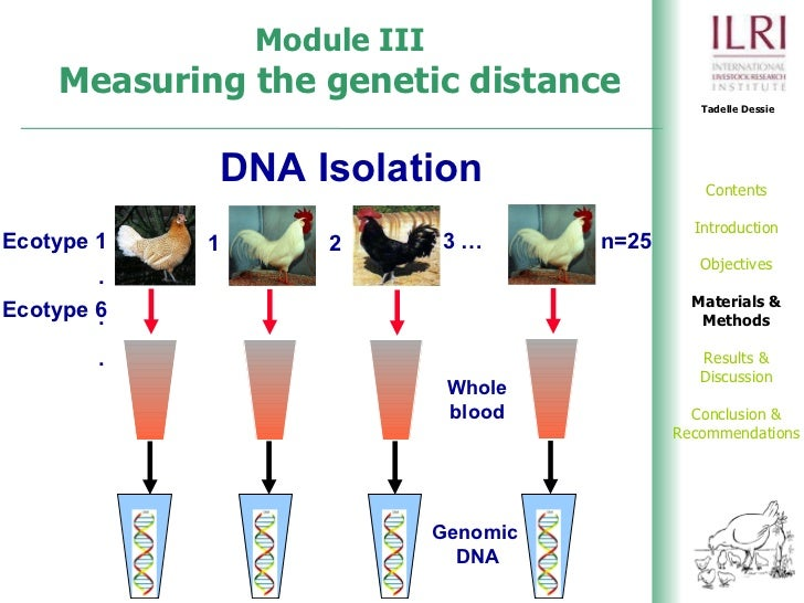 isolation and characterization of dna Dna isolation this portion of the experiment may be performed by an instructor in advance 1 inoculate (sterile technique) 100 ml of sterile  characterization of dna 1 remove the rod and the spooled dna from the 95% ethanol, blot away all obvious resid-  dna m (experiment 19 isolation of bacterial dna [na]).