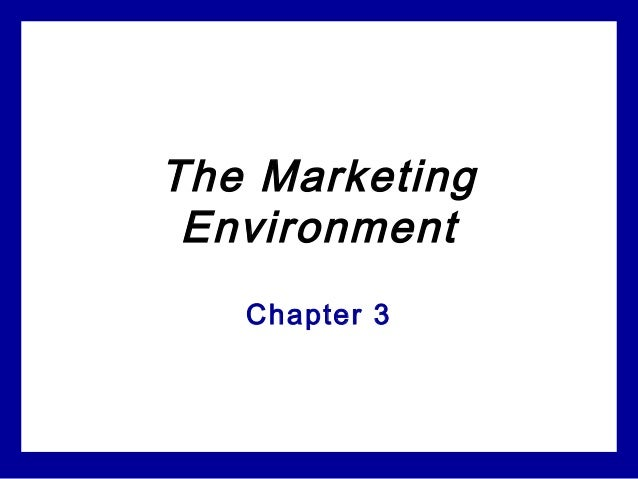chapter 3 the marketing environment essay Chapter 3 the government and not-for-profit environment nursing essay writing service marketing assignment help.