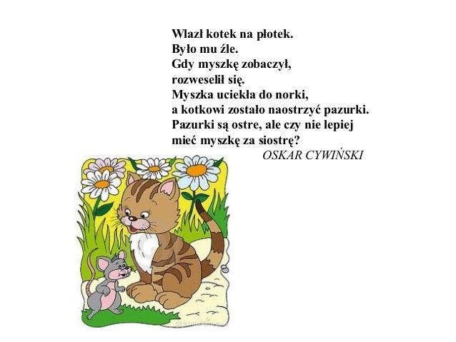 Koty Kotki Koteczki