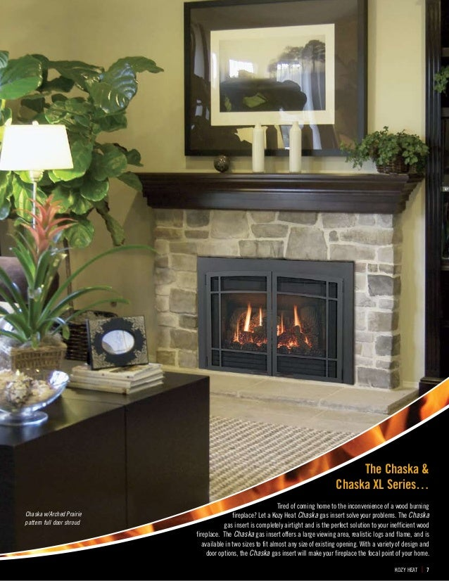Kozy Heat Gas Inserts - Alpine Fireplaces