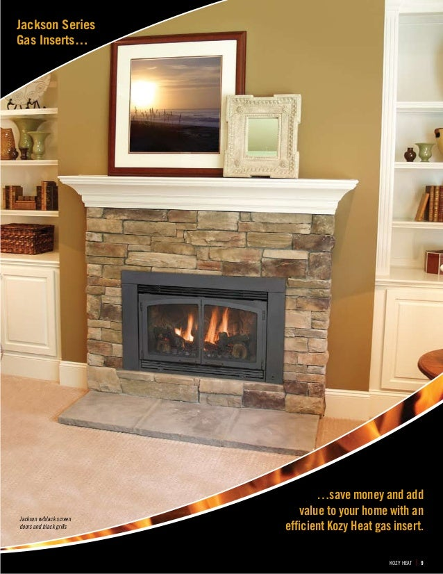 Kozy Heat Gas Inserts Alpine Fireplaces