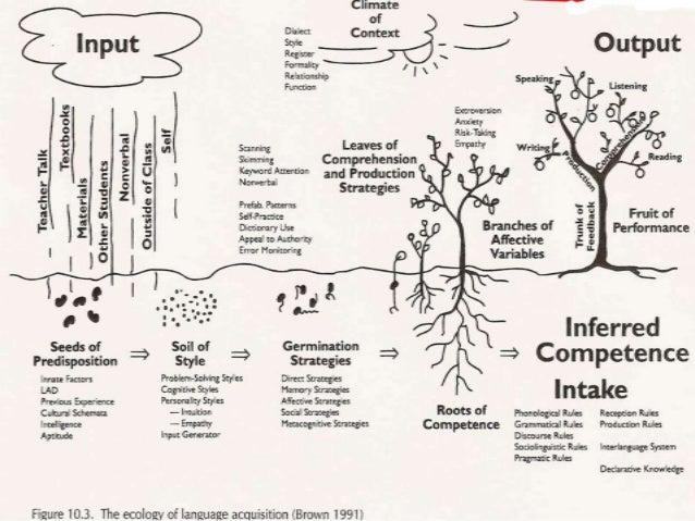 Krashen's Five Main Hypotheses