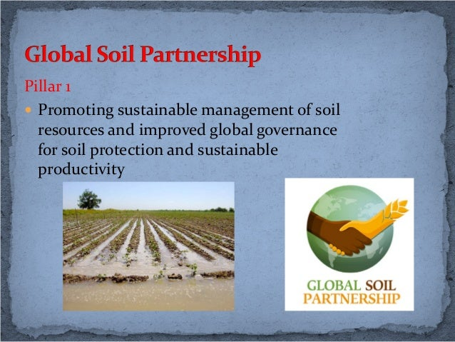 Status and challenges of soil management in russia p for Soil use and management
