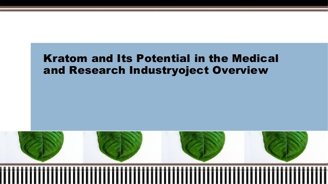 Kratom and Its Potential in the Medical and Research Industryoject Overview