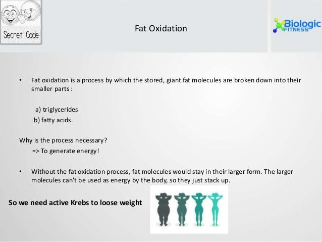 How well does the max planck diet work photo 4