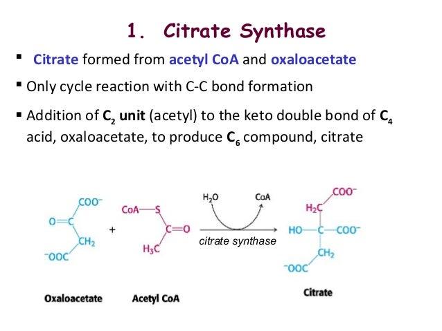 Krebs cycle or tricarboxylic cycle or citric acid cycle  Krebs cycle or ...