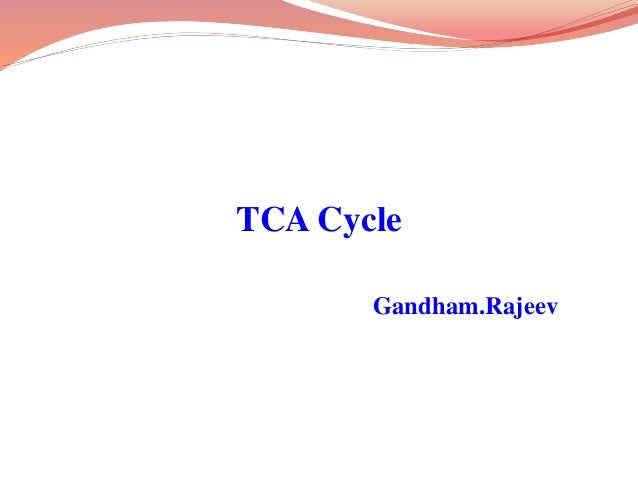 TCA Cycle Gandham.Rajeev