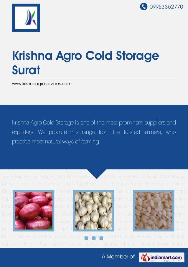 09953352770A Member ofKrishna Agro Cold StorageSuratwww.krishnaagroservices.comOnion Exporter Fresh Garlic Sesame Seed Fre...