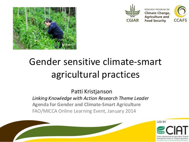N. Palmer  Gender sensitive climate-smart agricultural practices Patti Kristjanson Linking Knowledge with Action Research ...