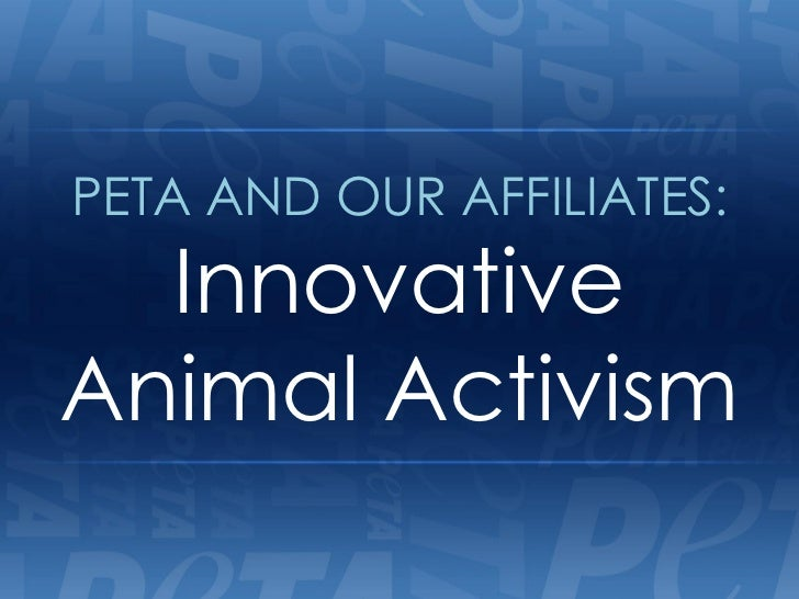PETA AND OUR AFFILIATES:  InnovativeAnimal Activism
