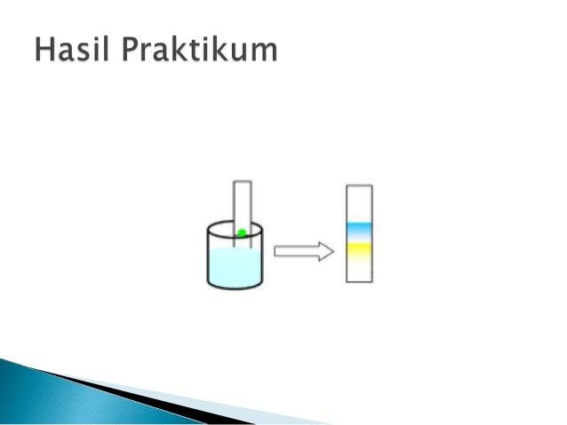 contoh laporan praktikum eksperimen problem solving