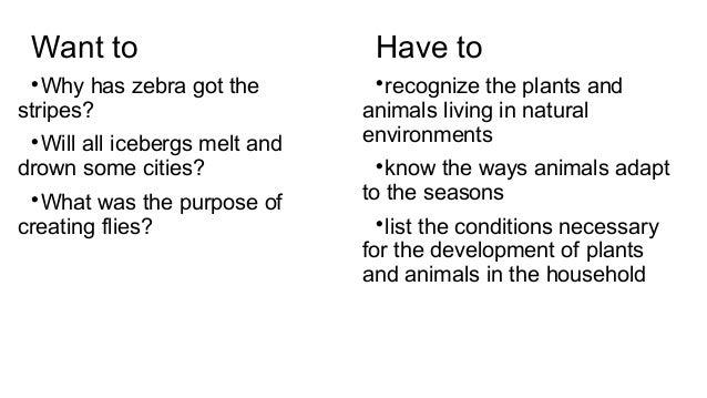 Агата Вилам для Knowledge Stream Slide 3