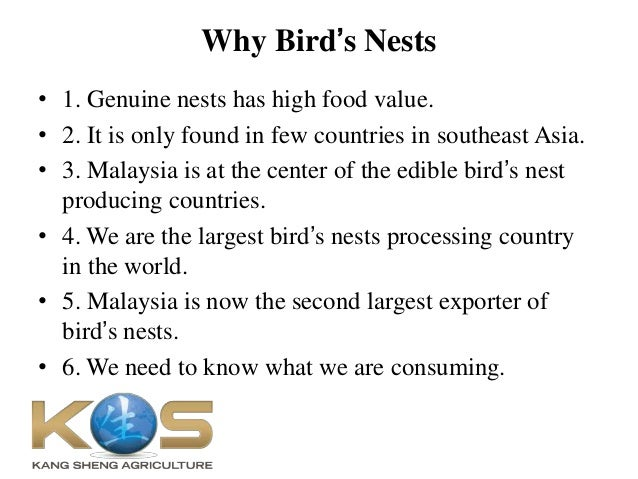 Kang Sheng Agri PPT about Bird's Nest Slide 2