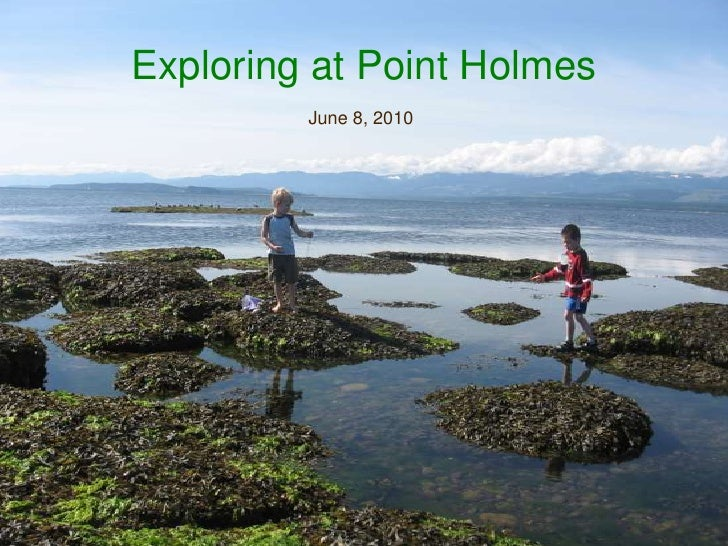 Exploring at Point Holmes<br />June 8, 2010<br />
