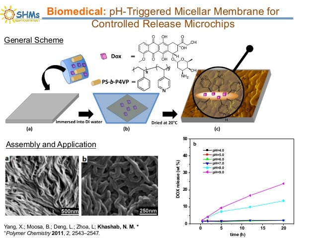 Innovatival Functionalized Nanomaterials for Biomedicalm Sensing and Composites Applications Slide 3