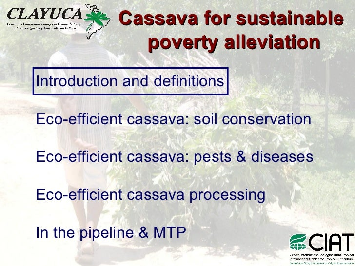 Cassava for sustainable               poverty alleviation Introduction and definitions  Eco-efficient cassava: soil conser...