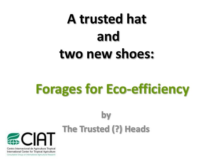 A trusted hat           and     two new shoes:  Forages for Eco-efficiency              by     The Trusted (?) Heads