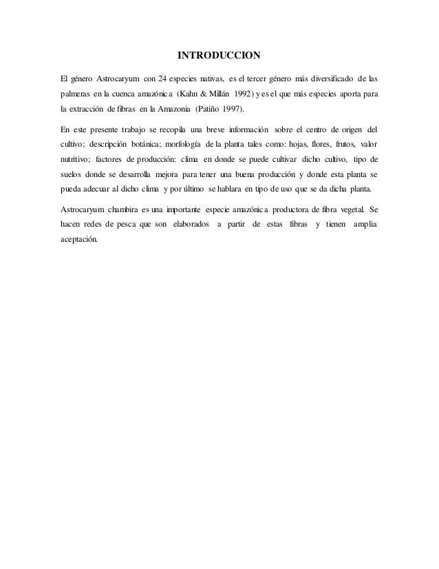 INTRODUCCION El género Astrocaryum con 24 especies nativas, es el tercer género más diversificado de las palmeras en la cu...