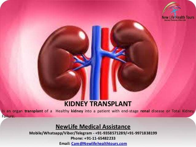 kidney transplantation essay Open document below is an essay on kidney transplant from anti essays, your source for research papers, essays, and term paper examples.
