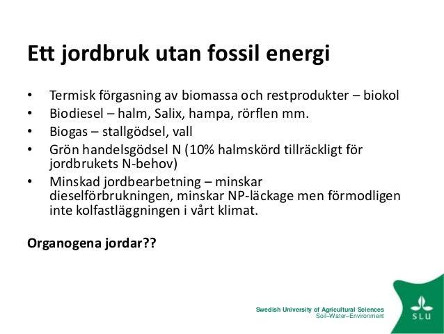 Kan du använda kol dating på fossil