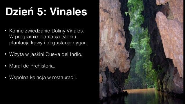 Dzień 7: Cienfuegos • Poranek na Półwyspie Zapata i dalsze podziwianie przyrody. • Przystanek w Cienfuegos - mieście urząd...