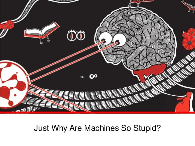 Just Why Are Machines So Stupid?