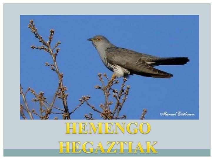 HEMENGO HEGAZTIA