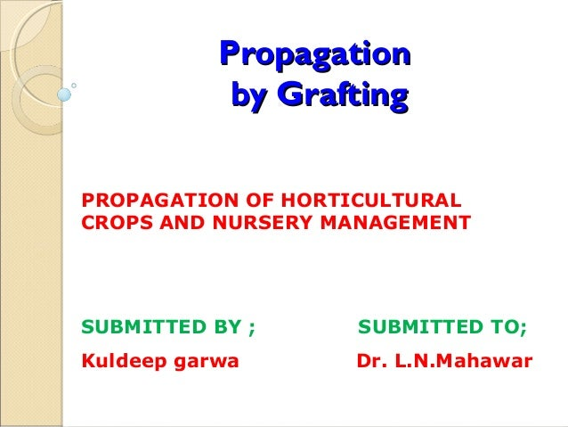 Propagation            by GraftingPROPAGATION OF HORTICULTURALCROPS AND NURSERY MANAGEMENTSUBMITTED BY ;     SUBMITTED TO;...