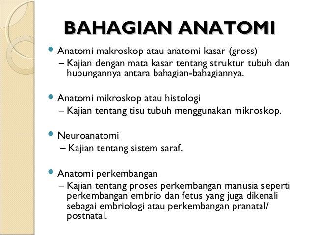 Kuliah 01 Pengenalan Anatomi Fisiologi