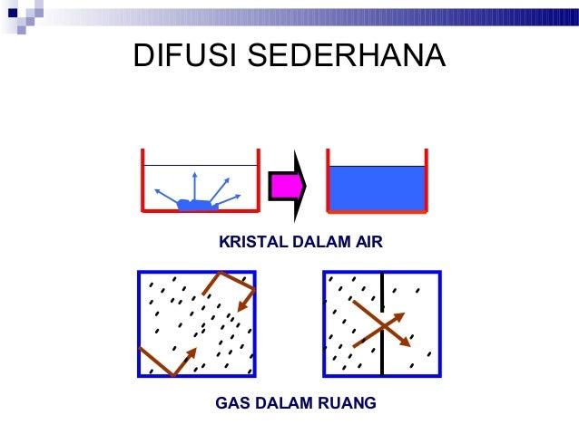 Kuliah 5 transfor pada membran sel difusi sederhana kristal dalam air gas dalam ruang ccuart Choice Image