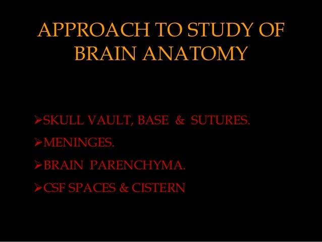 Mri Sectional Anatomy Of Brain