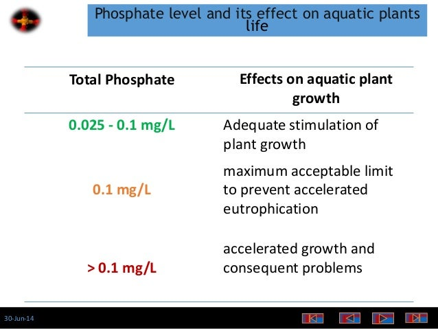 effects of detergent phosphates on plant growth
