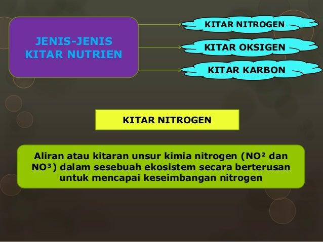 GEOGRAFI STPM PENGGAL3 - KITAR NUTRIEN DALAM EKOSISTEM