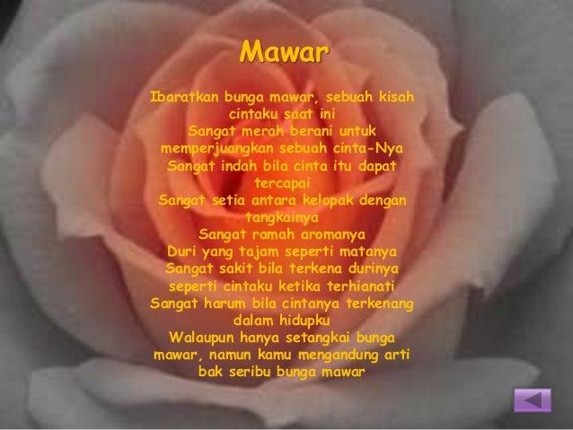 Kumpulan Puisi Ku