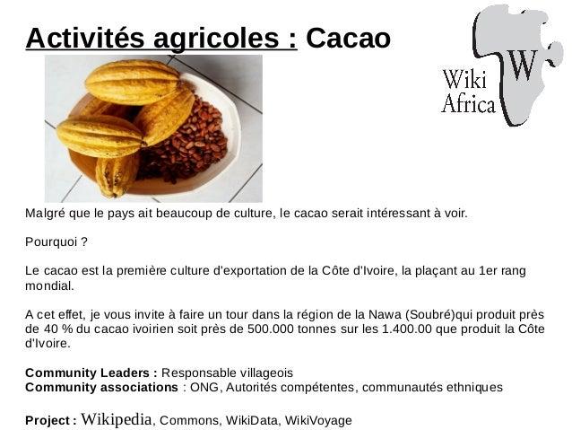 Activités agricoles : Cacao Malgré que le pays ait beaucoup de culture, le cacao serait intéressant à voir. Pourquoi ? Le ...