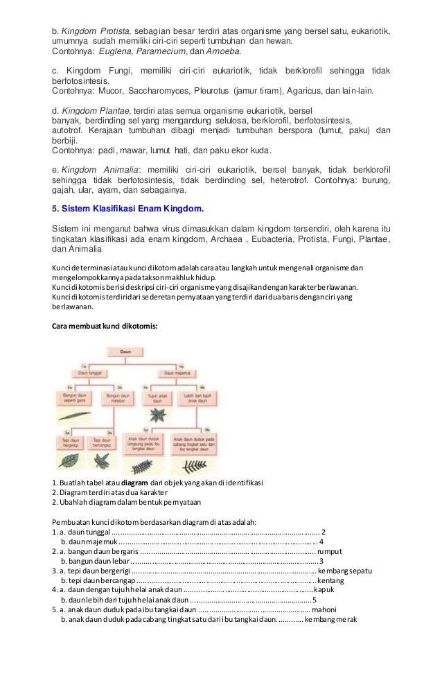 Contoh Kunci Determinasi Pada Hewan Invertebrata Miharu Hime