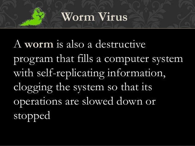 Computer Virus Information: What Do Viruses Do? | Webroot