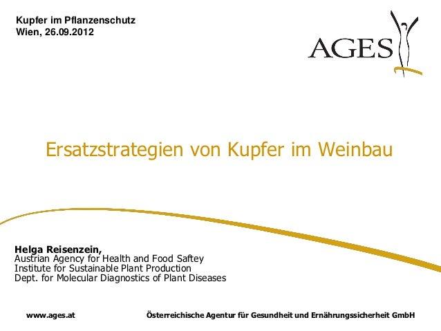 Kupfer im PflanzenschutzWien, 26.09.2012       Ersatzstrategien von Kupfer im WeinbauHelga Reisenzein,Austrian Agency for ...